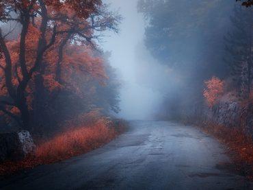 Autofahren im Herbst: Mit diesen Tipps fahren Sie sicher