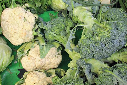 Karfiol-Broccoliauflauf mit Kräutern