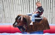 Fest mit Freunden: 7.000 Besucher beim Dacia Picknick