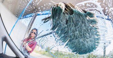 Saubere Sache: unsere Top-Tipps für die richtige Autowäsche