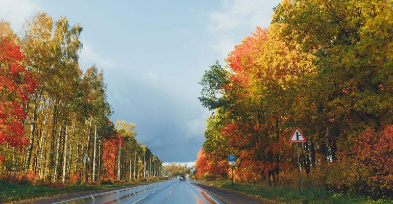 Tipps für sicheres Autofahren im Herbst